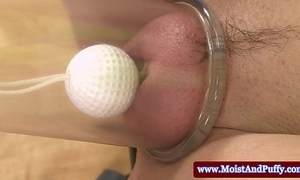 Puffy peach pet playing with golf natter on